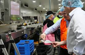 Bruised berries begone! New state-of-the-art technology at blueberry  packing house | Guardian News | Nambucca Heads, NSW