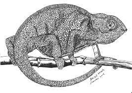 Lev Schenkt Toneelgroep De Kameleon Een Intercom Lev