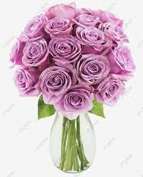 الأرجواني الورود الجذعية طويلة الطازج الأرجواني الورد وقف طويل