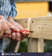 Adult Carpenter Craftsman With Screwdriver Screw The Screw To Fix The Boards Of A Wooden Fence Housework Do It Yourself Stock Photography Stock Photo Alamy