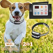 What Is The Longest Range Wireless Dog Fence