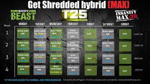 bodybeast hybrid with insanity max 30