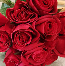 روائع الورود الصور فيسبوك