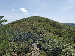 Bearfence Mountain Virginia Peakery