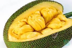 jackfruit nutrition facts health weku
