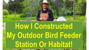 bird feeder station or habitat