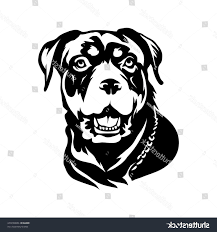 hd rottweiler dog head stencil vector
