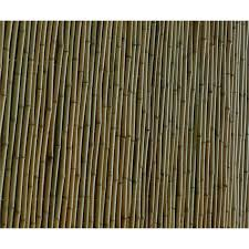 Eden 1 8 X 1 5m Natural Bamboo Premium Screen Fencing Bamboo Screening Fence Bamboo Screening Fence