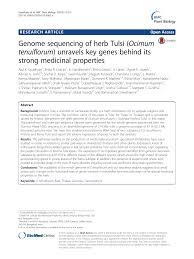 Genome sequencing of herb Tulsi (Ocimum tenuiflorum) unravels key genes  behind its strong medicinal properties – topic of research paper in  Biological sciences. Download scholarly article PDF and read for free on