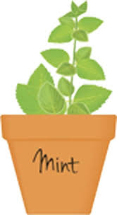 Pretty Potted Herb Cartoon Art Mint Vinyl Decal Sticker Shinobi Stickers