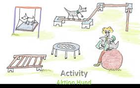 Aktuelles Sportangebot | Aktion Hund