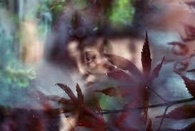 Adam Goldberg: Daguerreotype Achromat Art Lens First · Lomography