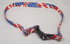 Invisible Fence Replacement Nylon Dog Collar Strap R21 R51 3 4 Wide
