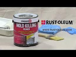 apply zinsser mold killing primer