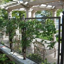 Metal Fence Design Ideas Pictures Remodel And Decor Page 14 Fence Design Fence Landscaping Backyard Fences