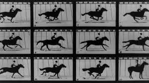 Photographer, Murderer, & Forefather of Cinema: Film Pioneer Eadweard  Muybridge in Focus