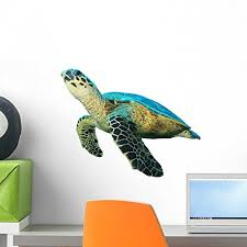Sea Turtle Wall Decals Kritters In The Mailbox Sea Turtle Wall Decal