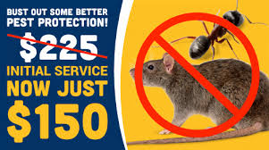Seattle Pest Control & Exterminators 877-926-9966 Guardian Pest Control