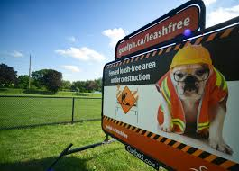 City S Two Fenced In Off Leash Dog Parks Now Open Guelphtoday Com