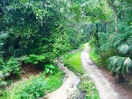 ravine garden state park palatka