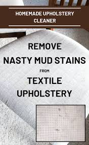 homemade upholstery cleaner remove