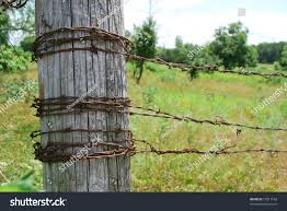 Barbed Wire Fence Post Stock Photo Edit Now 57817168