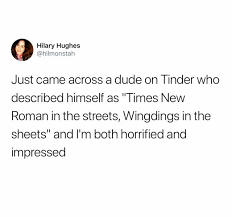 dopl3r.com - Memes - Hilary Hughes @hilmonstah Just came across a dude on  Tinder who described himself as Times New Roman in the streets Wingdings in  the sheets and Im both horrified