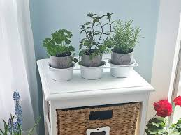 how to make a diy herb garden thrifty