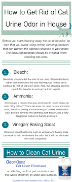 how to get rid of cat urine odor in the air