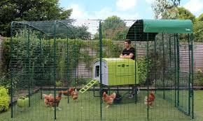 Walk In Chicken Run Walk In Chicken Run Chicken Enclosure Chicken Runs