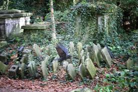 The Daily Constitutional: #HappyHalloween – A Wander in Abney Park Cemetery