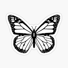 White Butterfly Gifts Merchandise Redbubble