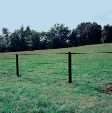 Polyplus Coated Horse Fencing Centaur Fencing