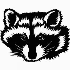 Racoon Face Decal