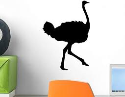 Amazon Com Wallmonkeys Ostrich Wall Decal Peel And Stick Graphic 12 In H X 10 In W Wm29001 Home Kitchen