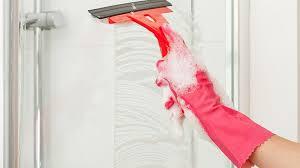 10 best shower squeegee in 2020