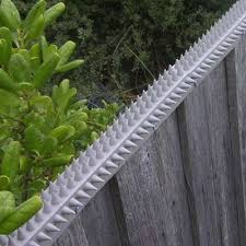 Fence Spikes Cat Spikes Possum Spikes Buy Online Cat Fence Home Security Tips Security Fence