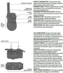 E Collars What Do The Buttons On The Remote Transmitter And Receiver Collar Do Sd 105 Sportdog