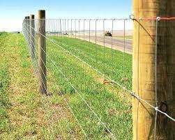 Seven Fencing Tips For Cattle Ag Industry News Farm And Livestock Directory