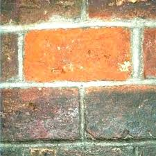 clean brick fireplace with vinegar