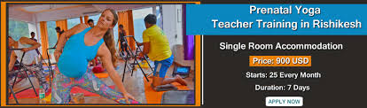prenatal yoga teacher course