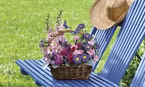 jacksonville fl flower delivery same