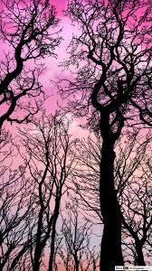 الوصول إلى سماء وردية تنزيل خلفية Hd