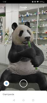 shark or panda in your living room ...