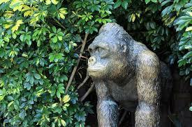 gorilla monkey sculpture zoo animal