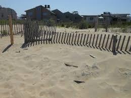 Dune Fencing Goes Up In Dewey Cape Gazette