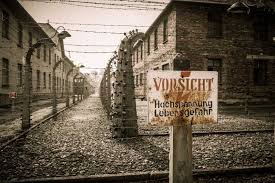 auschwitz small group tour from warsaw