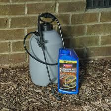 12+ Bayer Advanced Termite Killer Gif