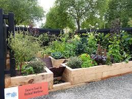 landscape design sustainable vegetable