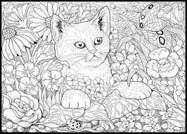 Coloring For Adults Kleuren Voor Volwassenen Cat Kitten